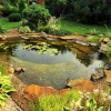 Garden pond creation